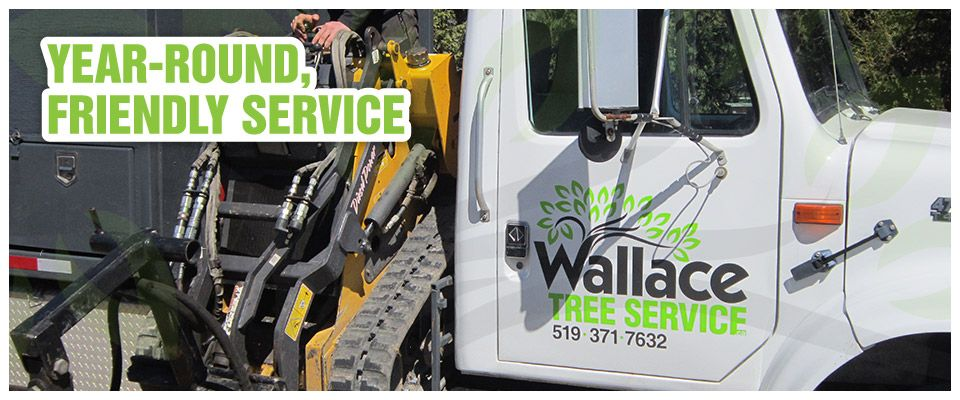Year-Round, Friendly Service | Skid steer comes loaded on truck